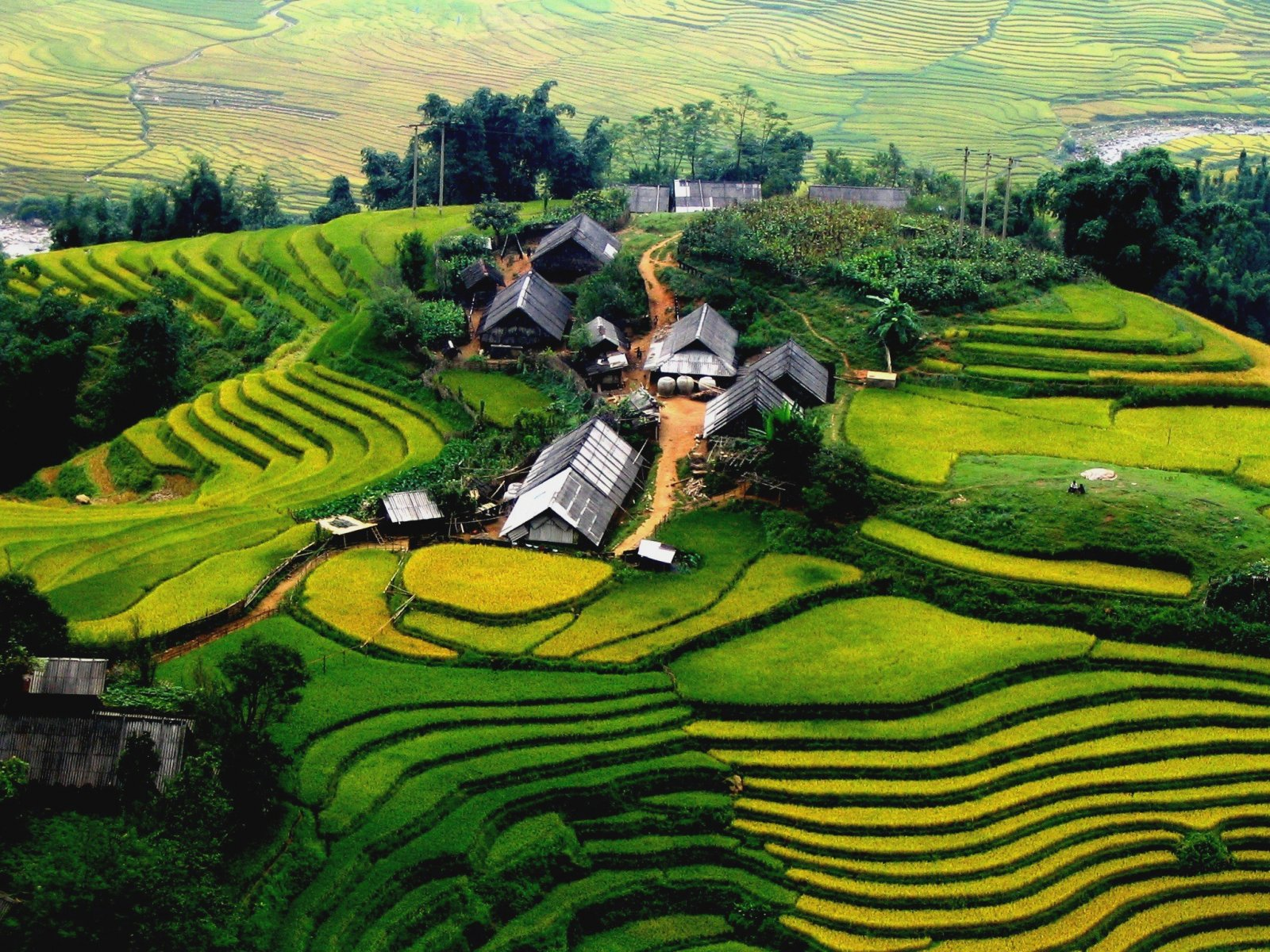 Discover the Northwest of Vietnam 9 Days