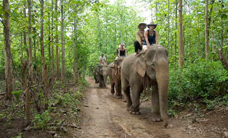 Luang Phrabang - Full Day elephant Riding